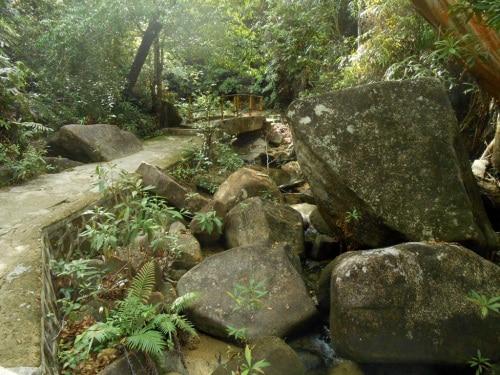 Jalan Menuju Air Terjun Pongkar